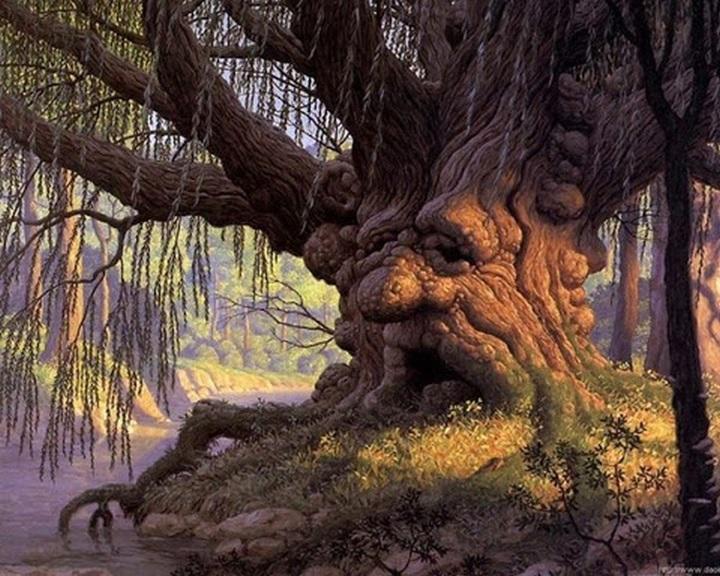 A Föld napja - Már 100 ezer fát ültetett el a 10 millió Fa Alapítvány