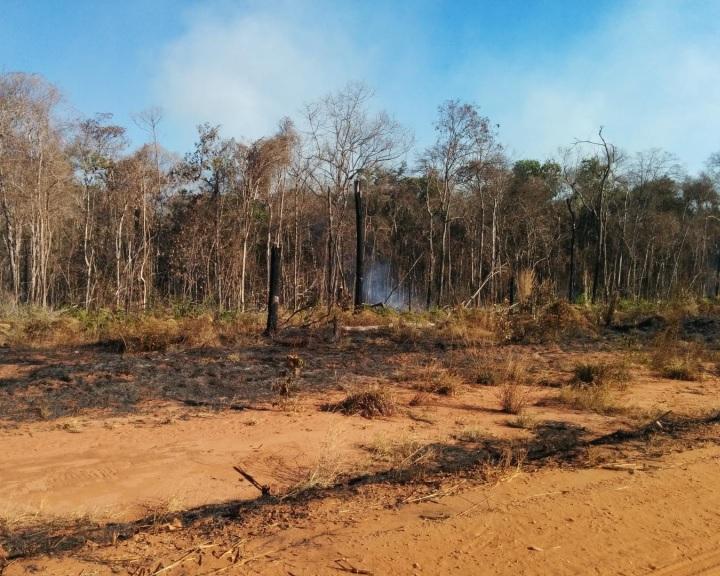 Már nettó karbonkibocsátó Amazónia brazíliai része