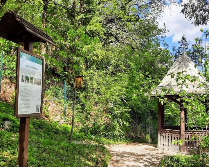 Fejlesztések a pécsi Pintér-kert Arborétumban és Tettyei Oktatási Központban