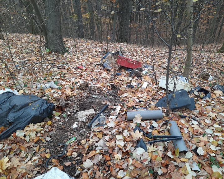 Illegális szemétlerakókat számoltak fel a baranyai erdőségekben