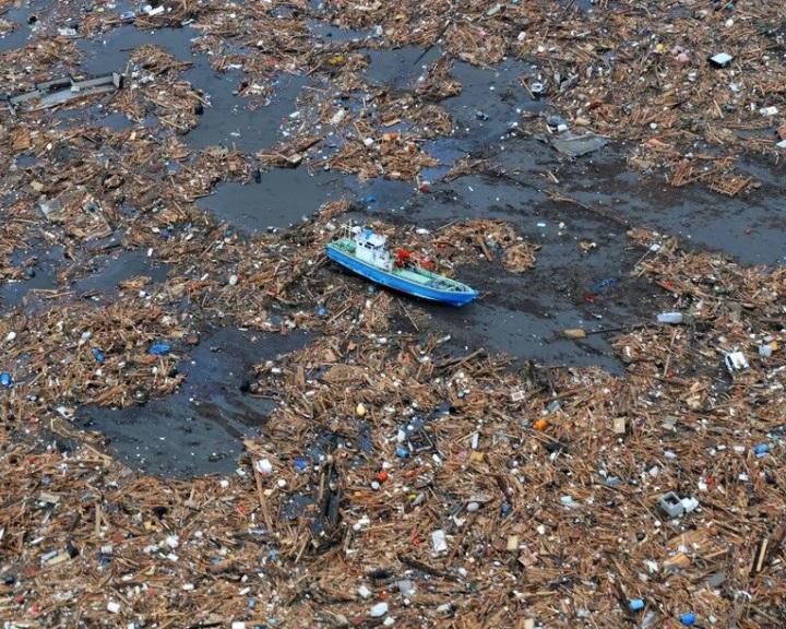 Műanyaghulladékokon utazva szelik át az óceánokat a betolakodó fajok