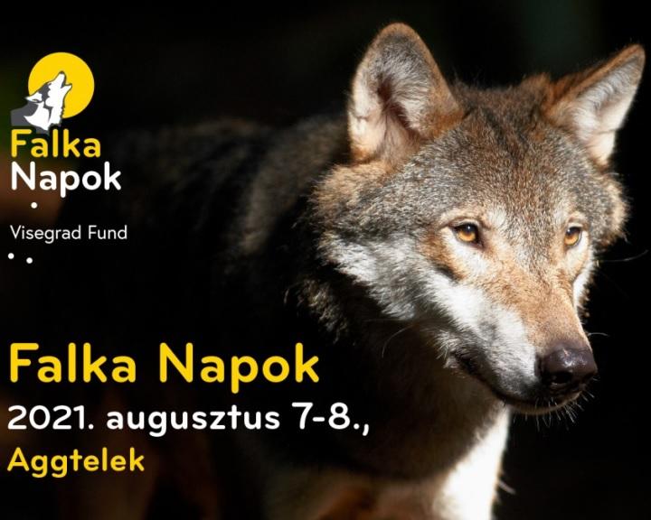 Falka Napok - Az ember és a nagyragadozók kapcsolatát a középpontba állító fesztivált rendeznek Aggteleken