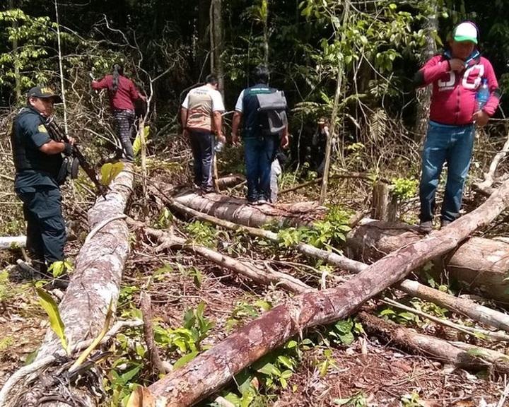 Műholdas technológia segíthet az őslakosoknak az erdőirtások megfékezésében