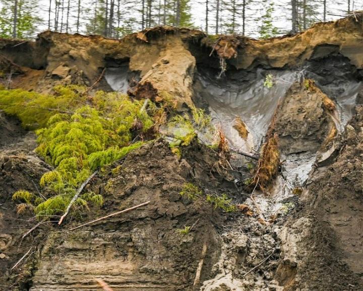 Rengeteg metánt szabadított fel a szibériai hőhullám