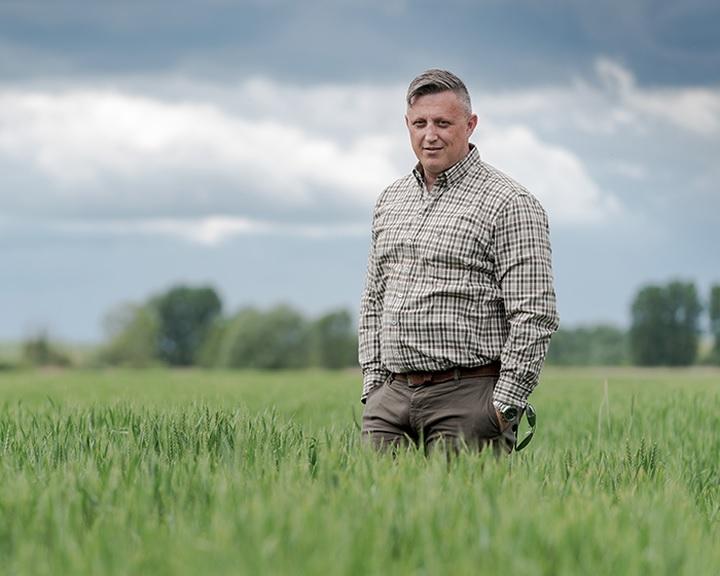 Az időjáráshoz alkalmazkodó szántóföldi növényekben bíznak a termelői érdekképviseletek