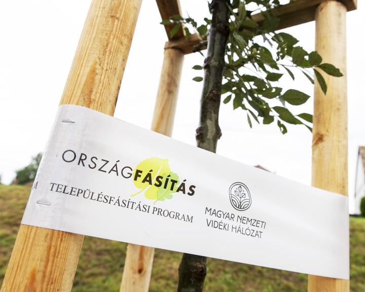 Elkezdődött a településfásítási program őszi ültetési időszaka
