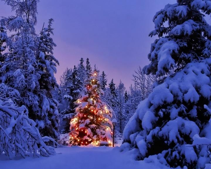 Karácsonyváró gondolatok
