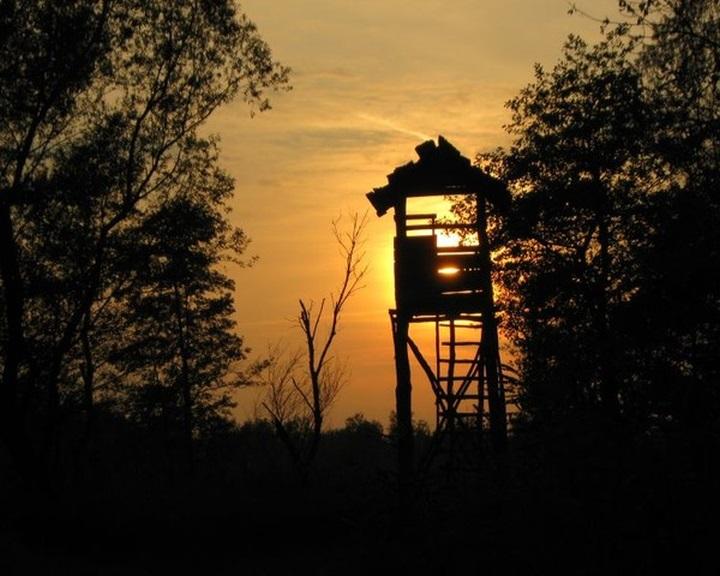 Erdőlátogatási tilalom a Mecsekerdő Zrt. vadászterületein