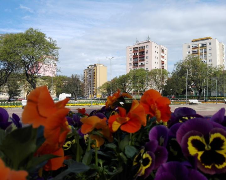 Komlói virágkötő kiállítása