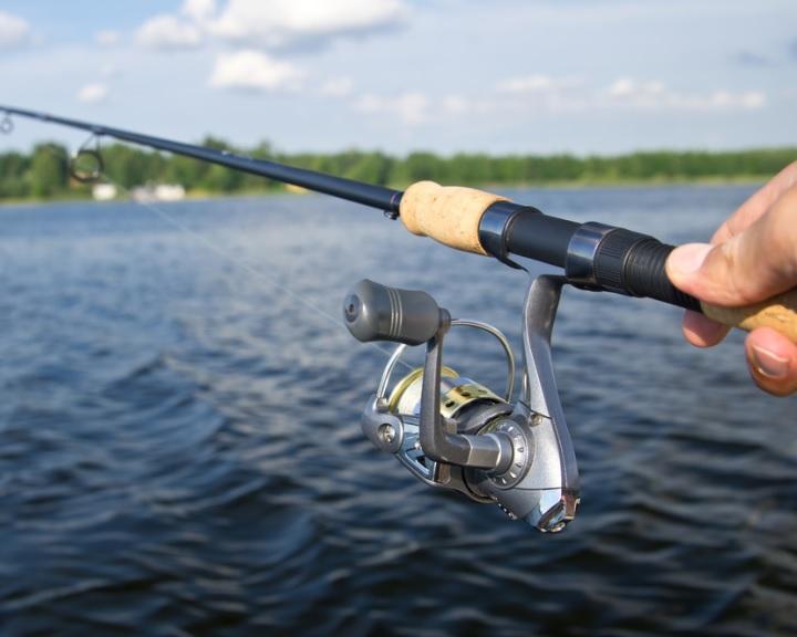MOHOSZ: több mint hetvenezerrel nőtt a regisztrált horgászok száma