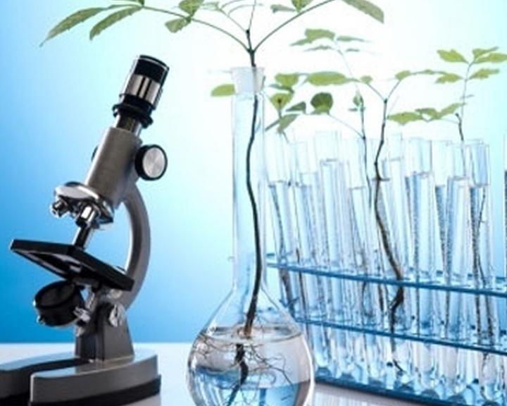 A világon egyedülálló teljesítményű mikroszkóppark beszerzése indult meg a pécsi egyetemen