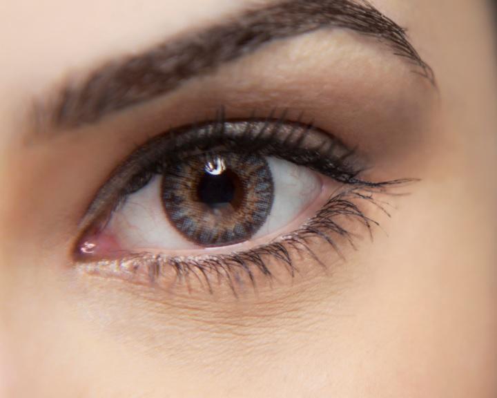 Bizonyították a retina és az agykéreg mozgásérzékelésének összefüggését