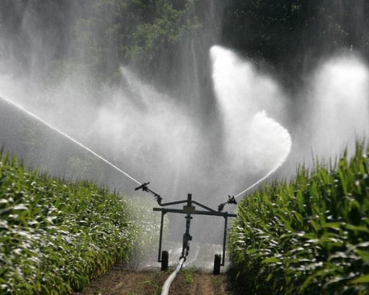 Agrárkamara: kihirdették a tartósan vízhiányos időszakot