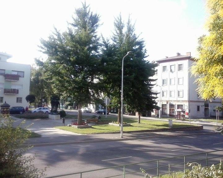 Megkezdődik a Petőfi tér és környezetének rehabilitációja