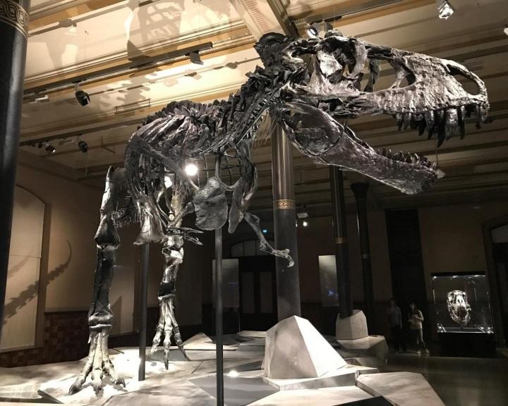 A dinoszauruszokat kipusztító aszteroida 2 évre sötétségbe borította a Földet