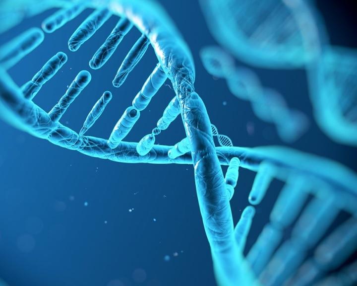 Eddig ismeretlen gének millióit fedezték fel az emberrel élő mikrobákban