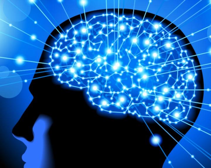 Magyar kutatók térképezték fel az agyi kapcsolatok egyénenkénti változékonyságát