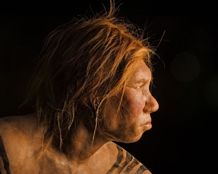 Több van bennünk a neandervölgyiekből