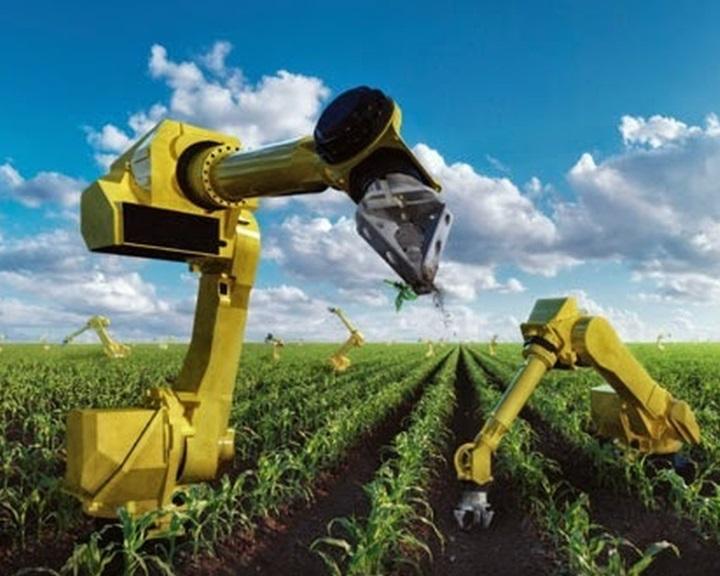 Trump miatt automatizálódik az amerikai mezőgazdaság