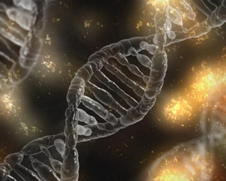 Először próbálkoztak génszerkesztéssel élő ember szervezetében