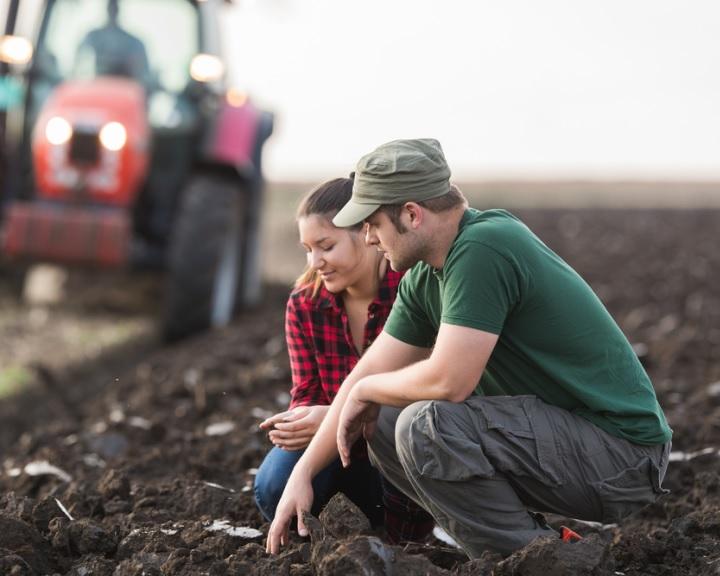 Egyszerűbb agrárpolitikát szavazott meg az EP