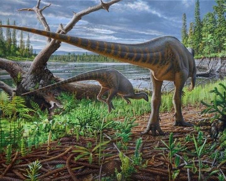 Pulyka méretű dinoszaurusz járta a vidéket egykor Ausztrália és Antarktika között