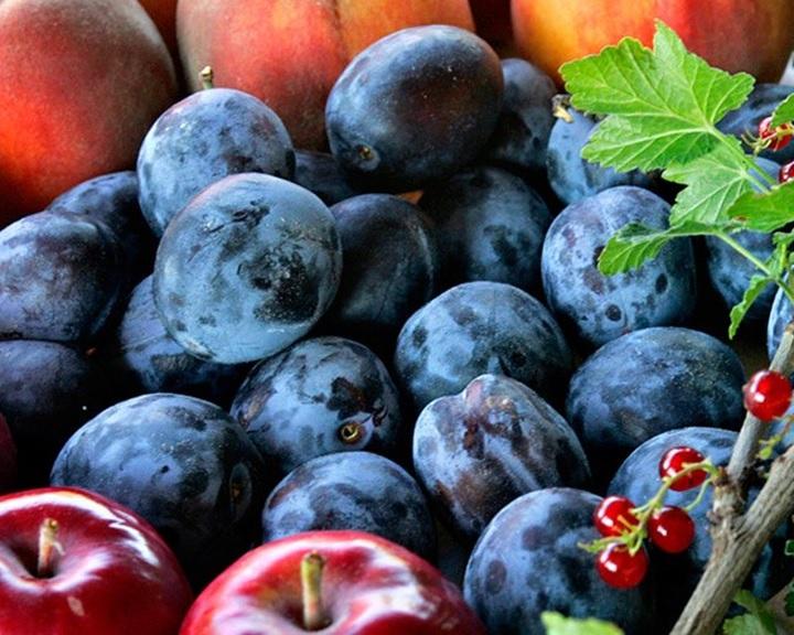 FruitVeB: az idén is népszerűsítik a magyar gyümölcsöket és zöldségeket