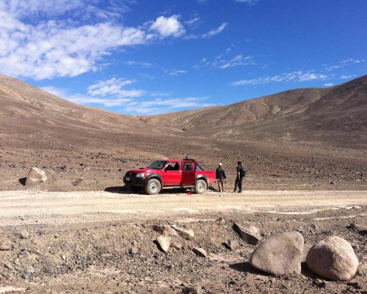 Először sikerült azonosítani állandó lakókat a Föld legszárazabb sivatagjában