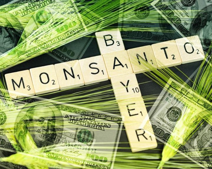 Az EU engedélyezte a Bayer számára a Monsanto felvásárlását