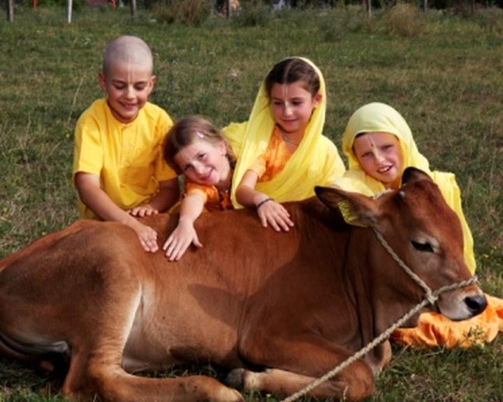A Krisna-völgy negyedszázados fennállását ünneplik Somogyvámoson