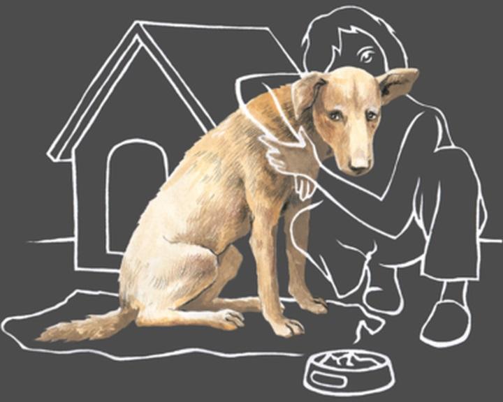 Jótékonysági kutyafesztivált rendeznek a Bókay-kertben