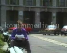 1995. június 29-i testületi összefoglaló
