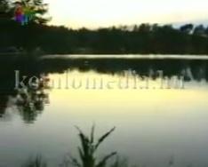A Komlói Horgász Egyesület éjszakai horgászata az abaligeti tónál