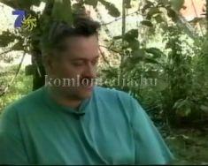 Afrika Kamillája(Tamás Eszter, Grosch Csabáné, Grosch Csaba, Csabika, Oláh Tibor),