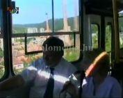 Új helyi járatos buszok (Gung János, Páva Zoltán, Néder Kálmán)
