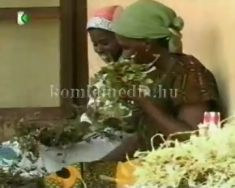 A Komló és Térsége TV Afrikában 2.