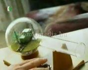 Türelemüveg (Farkas Gábor)