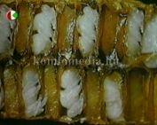 A gyógyító méz (Gillich István)