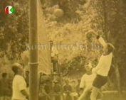 A komlói röplabda múltja (Radnai Ernő)