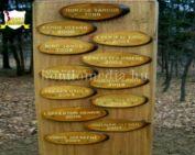 Hétdomb Természetbarát Egyesület 2007 harmadik negyed éve (Őri Zsuzsanna)