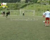 Szellemi fogyatékossággal élők labdarúgó mérkőzése (Szám Attila, Wágner László)