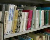 Sikeres könyvtári pályázat (Vass Marianna)