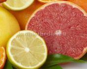 A C-vitamin előnyei (Szabó Petra)