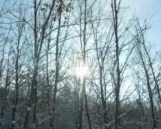 A Hétdomb Természetbarát Egyesület őszi programjai (Őri Zsuzsanna)