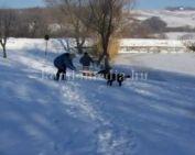 Megkezdődött a téli szezon a tavainkon (Ambrus József)