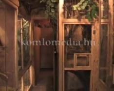 Megnyitotta kapuit a komlói Mini Zoo (Faragó Endre, Polics József)