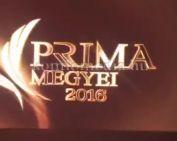 Prima Primissima-díjakat adott át Demján Sándor (Polics József, Demján Sándor)