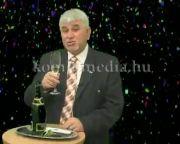 Polics József polgármester újévi köszöntője