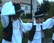 Magyarhertelend Szüreti felvonulás 1994