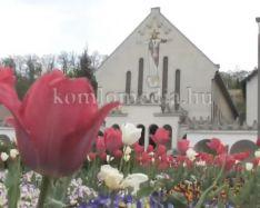 Nagy változások várhatóak a Templom téren (Polics József)